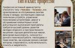 Администратор. профессия администратор. словарь профессий