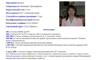 Главный конструктор. описание профессии главный конструктор