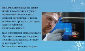 Ветеринарный фельдшер. профессия ветеринар