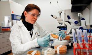 Вирусолог. профессия вирусолог. профессия вирусолог